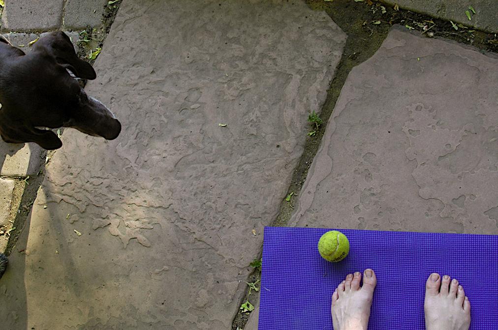 Yoga with Halle - Denver, Colorado