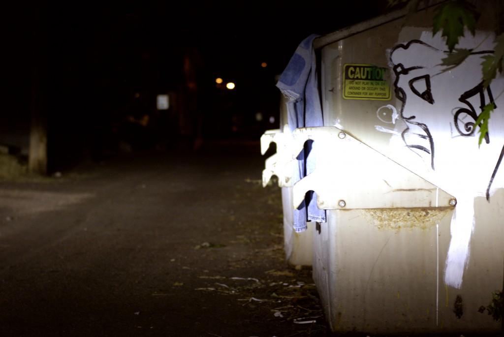 nightdumpster